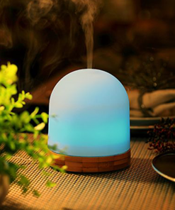Diffusers & Oil Burners