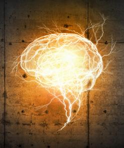 Mind-Body Connection & Psychology